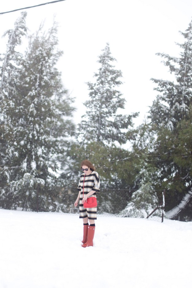 Winter wunderland_00008