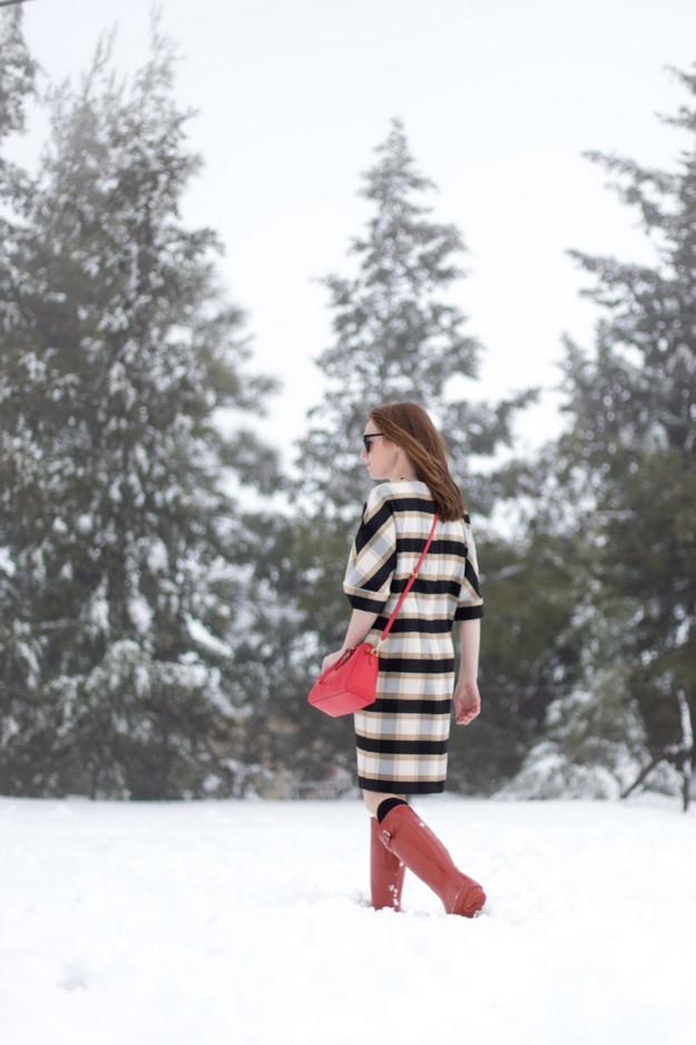 Winter wunderland_00011